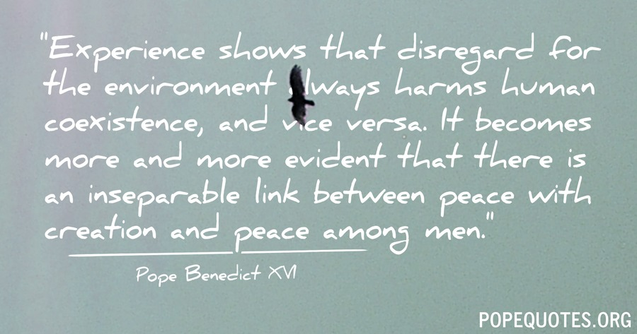 experience shows that disregard for the environment - pope benedict xvi
