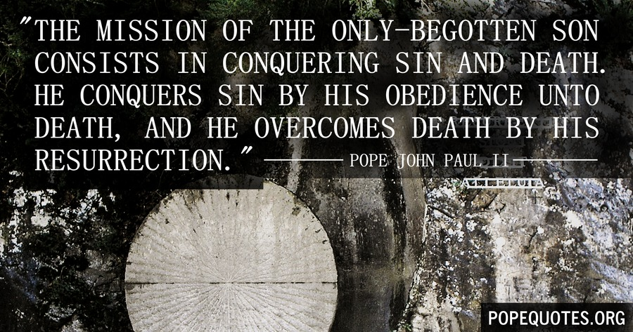 the mission of the only begotten son consists in conquering sin - pope john paul ii